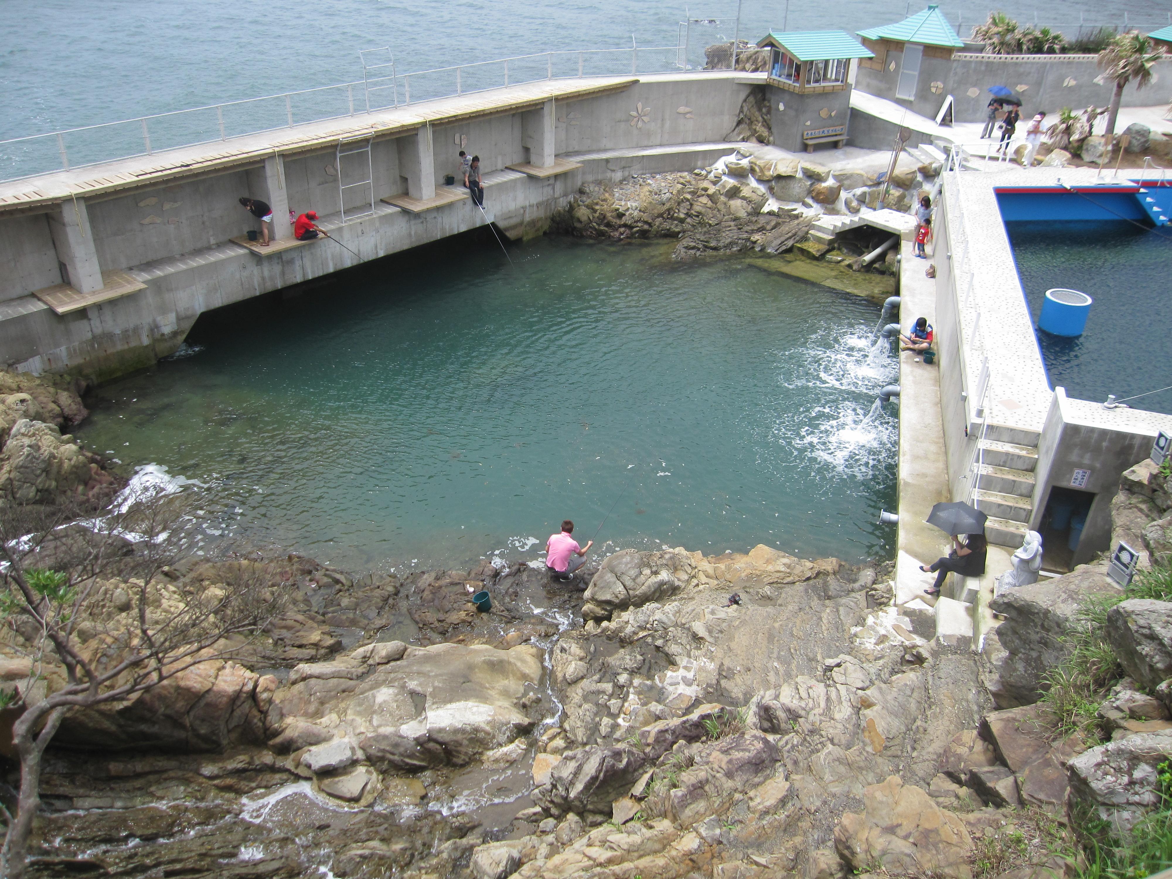 イルカランドの天然釣り堀
